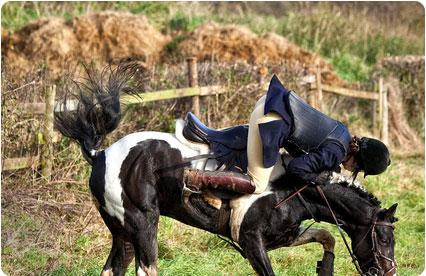 Accident cheval Paris